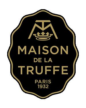 MDT - logo plein - 300x376